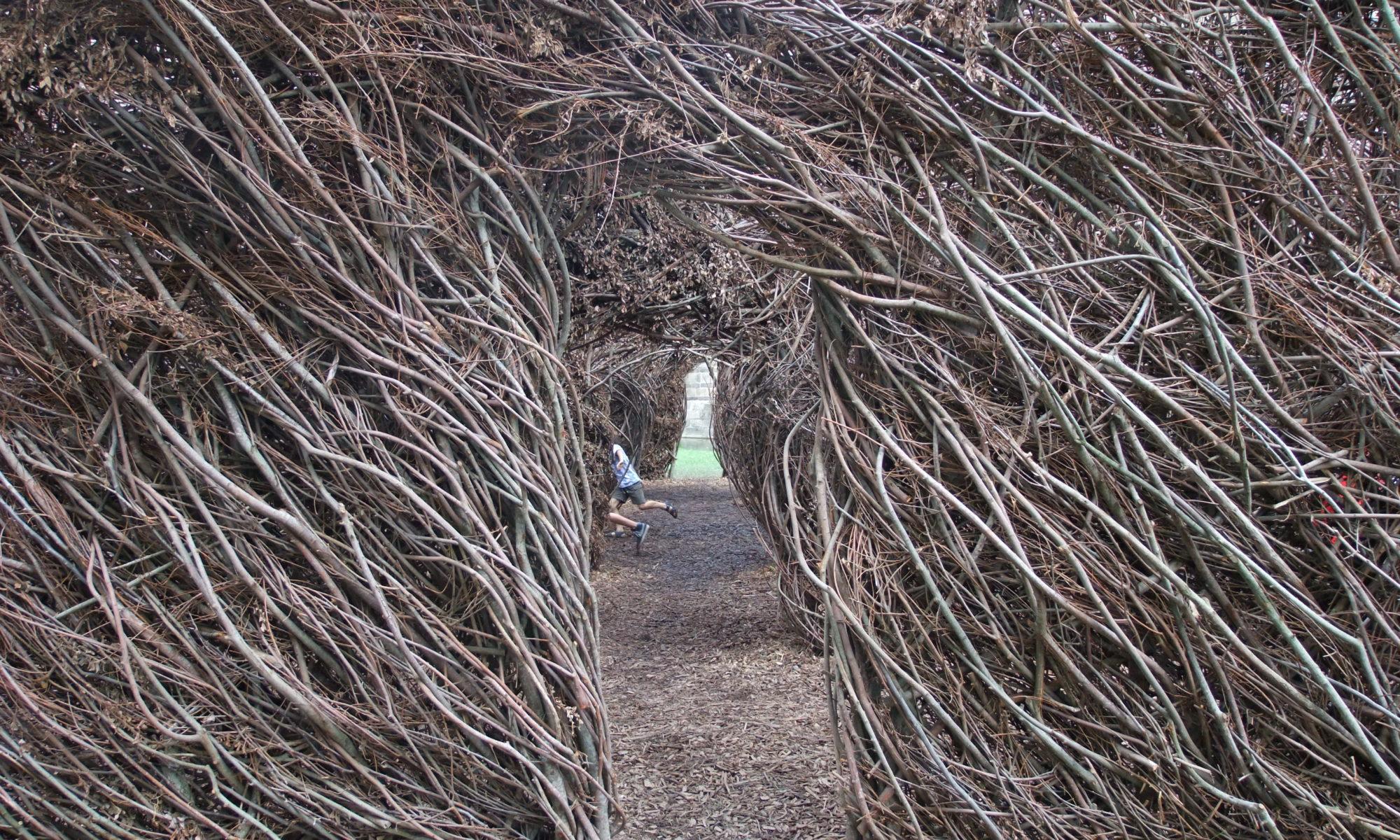 Dans la caverne